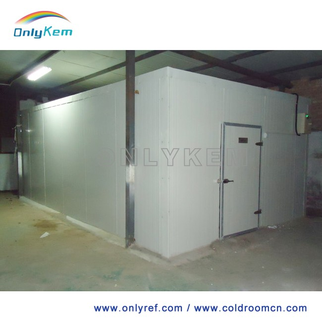 accessories cold room walk in freezer price