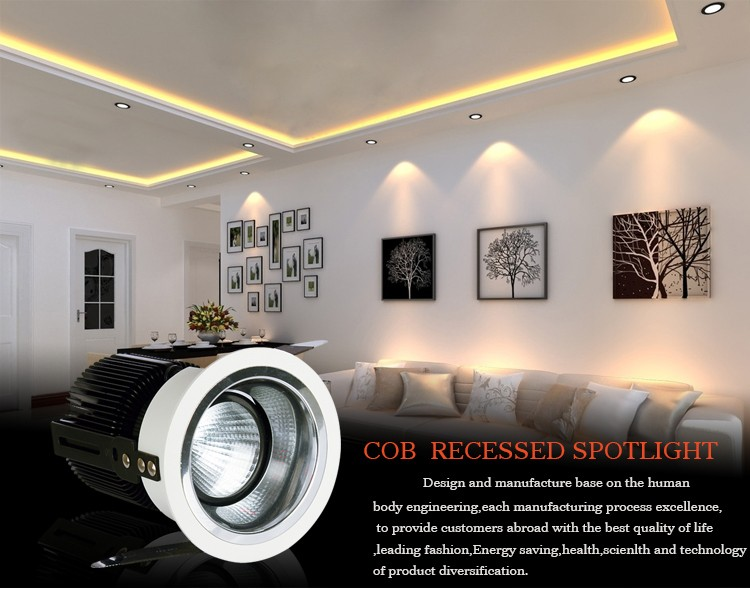 220V 1000 lumen home decor dimmable cob led spotlight 10w
