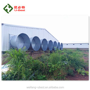 design modern chicken farm with silo/feeder pan/nipple drinker/wet curtain/blower fan/air inlet poultry/brooder heater