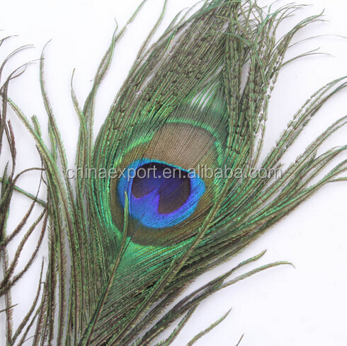 Wholesale Fashion Natural Color Peacock Feather With Eyes For Decorations