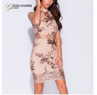 GC-66870429 Wholesale New Arrival Embroidery Celebrity Bodycon Strap Sundress 2019 Sexy Sleeveless Halter Hollow Lace Club Dress
