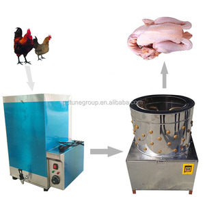 Chinese factory price chicken plucker scalder/poultry scalding plucking  machine