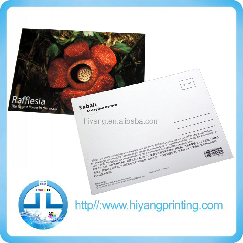 Holiday Greeting Cards/ Postcards Printing - Buy Birthday Greeting  Cards,Printing Tarot Cards,Paper Greeting Card Product on Alibaba com