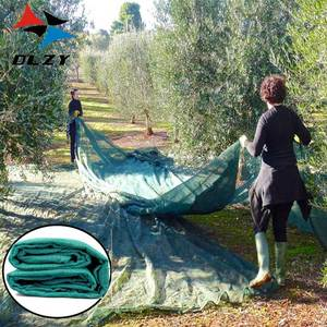 2018 New olive collection fruit tree netting for wholesale