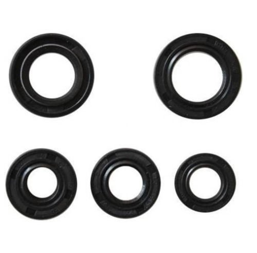 Oil Seal Kit 50cc, 70, 90cc, 110cc, 110cc, 125cc 5 Seals for 1P47FMD, 1P49FMF, 1P50FMG, and 1P52FMH motors
