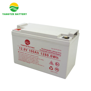 Free OEM marine 12 v 100ah lifepo4 battery with bms