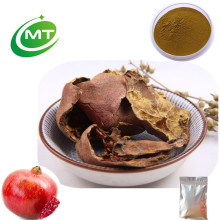 Pharmaceutical Grade Best Selling Pomegranate Extract Peel Powder 10:1