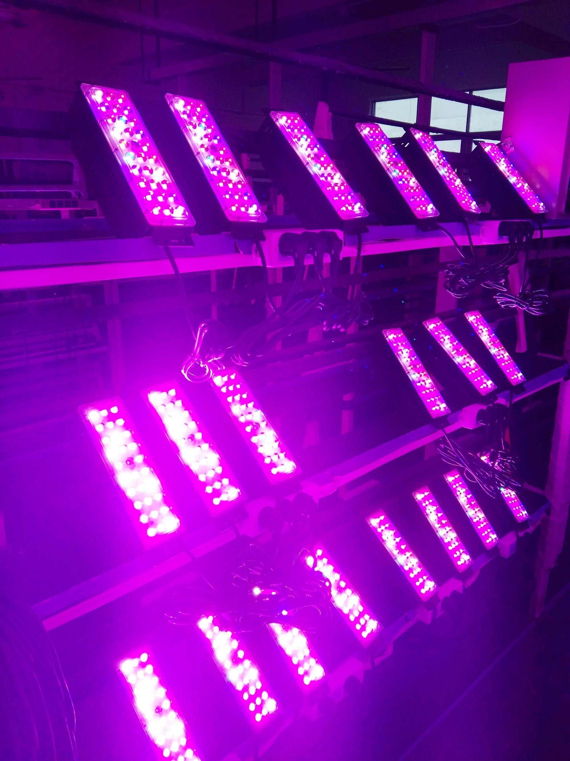 2019 Top Seller  Full Spectrum 45w--225w LED Grow Lighting  for Grow tents medical plants