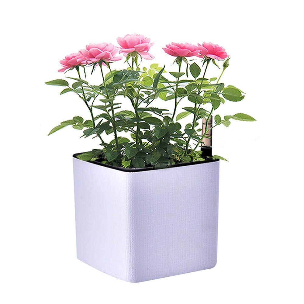 Cheap Self Watering Window Box Find Self Watering Window Box Deals