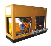 Natural Gas Fuel Engine Generator set 200kW 250kVA