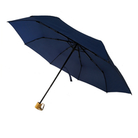 Market manual open single layer compact rain umbrella for sale