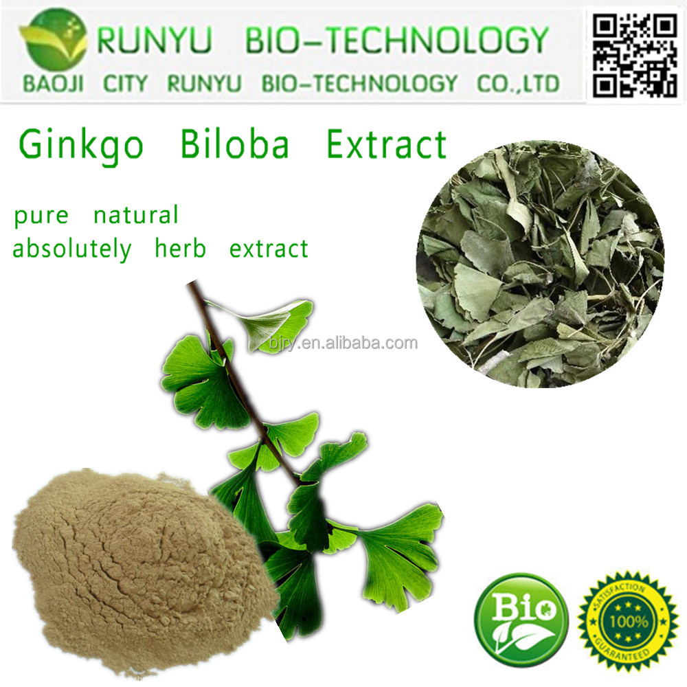 RUNYU 100% natural flavonoids ginkgo biloba leaves extract powder /USP grade herb extract