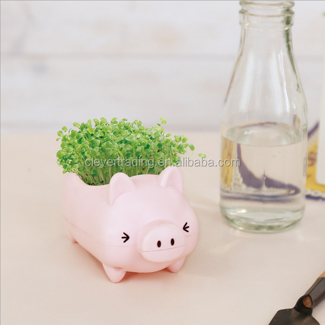 Pig shape office desktop plastic plants potted
