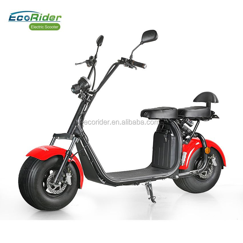 EcoRider E5 public road citycoco with double seat and mirrors, two wheel electric scooter with EEC and COC