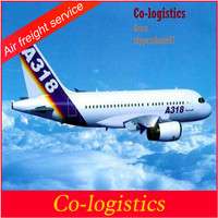logistics companies service with cheap price ship