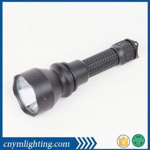 Taschenlampe unten Anus #6