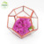 Mini Succulents in glass geometric terrarium Mother gifts * Indian candle holder ** personalized Korean Arabic wedding favors