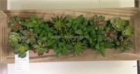 mini artificial plants photo frame artificial flowering succulent plants