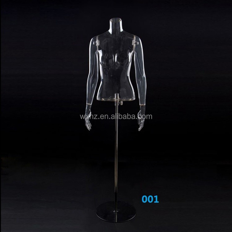 Sexy plastic female mannequin of transparent torso