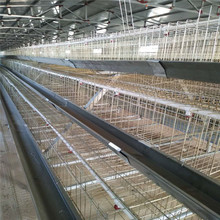 Free sample no courier fee poultry battery cages sell to kenya chicken farm