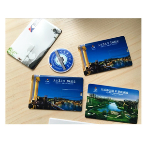 Giveaway Business card USB 2.0 flash stick with 2GB storage chips