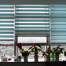 Indoor blackout zebra window blinds daylight roller blinds