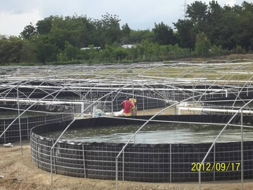 Plastic Water Tanks Fish Farm For Tilapia And Catfish