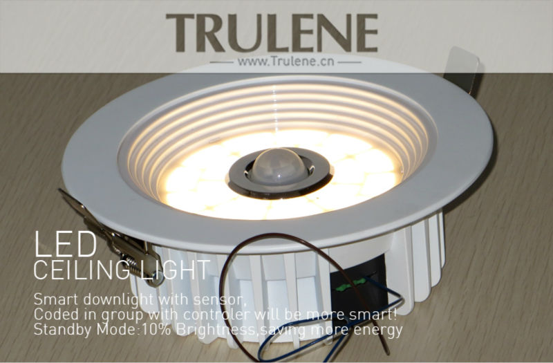 LED light Downlight (6).png