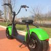 Good Design precio motocicleta electric citycoco barato