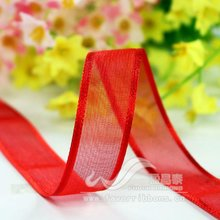 Red Ribbon Organza