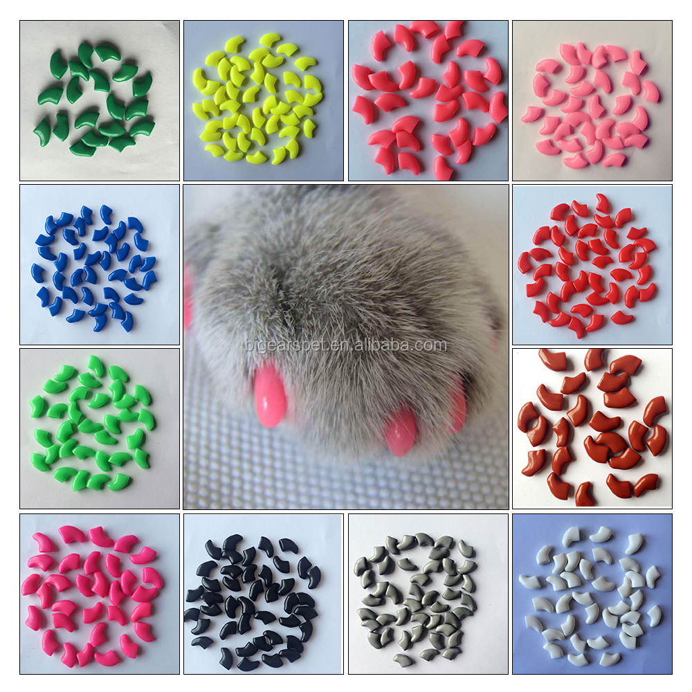 Top quality made in China 2017 cheap anti scratch XS-S-M-L cat nail caps