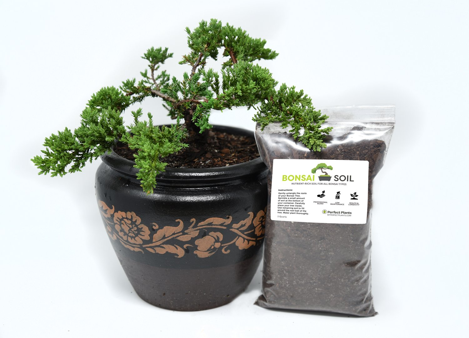 Bonsai Soil by Perfect Plants — Organic, 2 Quarts Professionally Mixed for Proper Nutrients and Moisture Retention — Multi-Purpose Soil for All Bonsai Tree Types