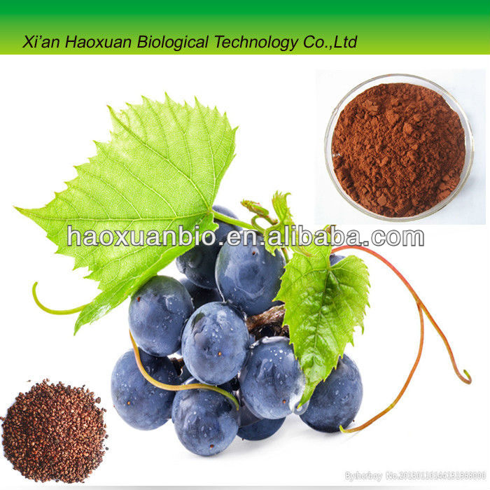Grape Seeds extract for sale