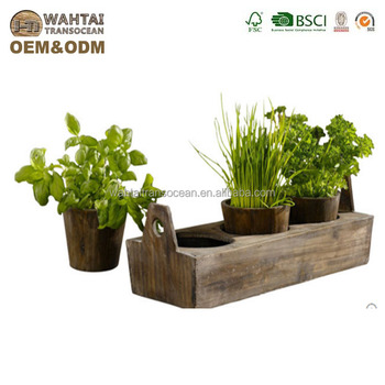 Woody 3 Plant Garden Tray,Kitchen Herbs,Windowsill,Farmhouse Decor   Buy  Decorative Cosmetic Tray,Decorative Indoor Herb Garden Pots,Coffee Cup ...