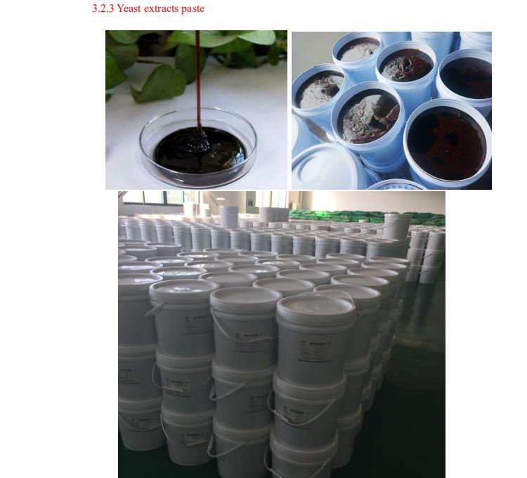 yest extract paste