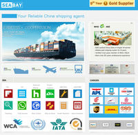 best professional sea freight cargo logistics tracking broker
