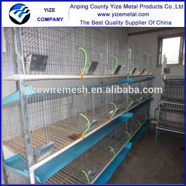 Wholesale Alibaba Rabbit Farming Cage In India In Zambia
