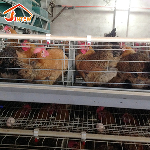 Poultry farm 3 tier A type chicken cages automatic nipple drinker