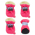 Winter autumn warm converse dog shoes pet shoes for rabbits dog shoes