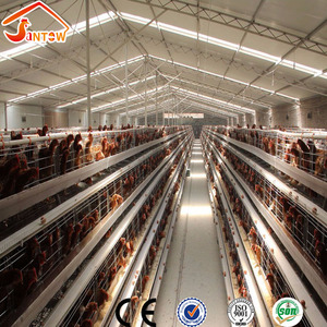 Galvanized welded wire chicken cages hot sale price large scale automatic chicken layer farm for 20000 Chicken