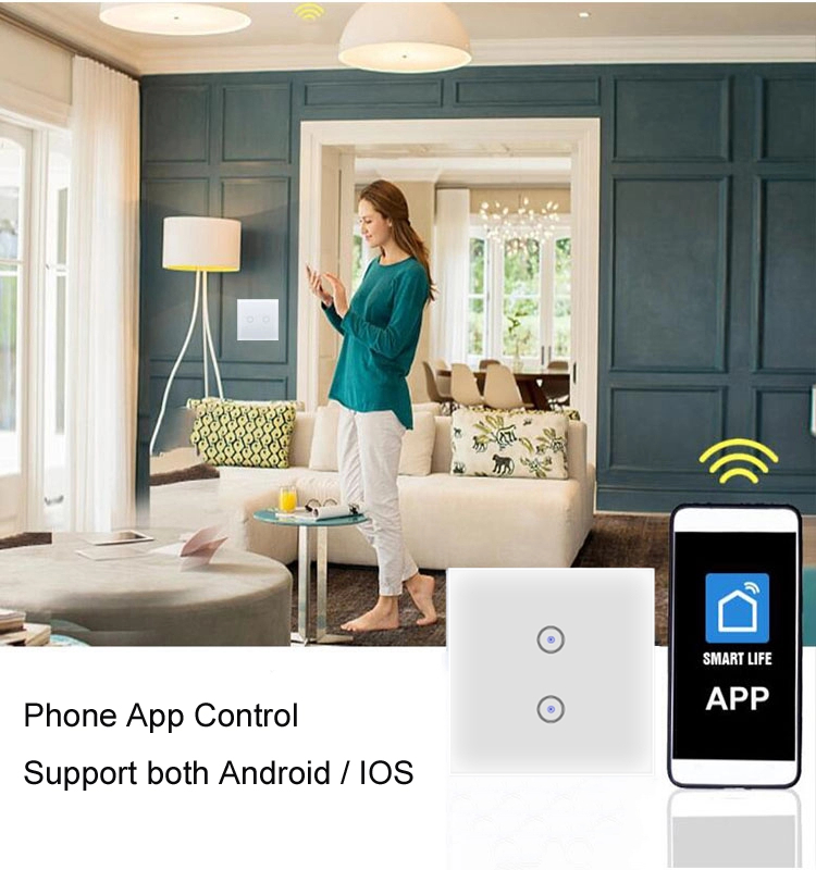 Xenon  EU Standard wifi smart wall light switch 2 gang  remote Control support Tuya Work with Amazon Alexa Google Assistant
