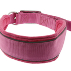 Custom Logo Neoprene Padded Nylon Dog Collar Manufacturer from China