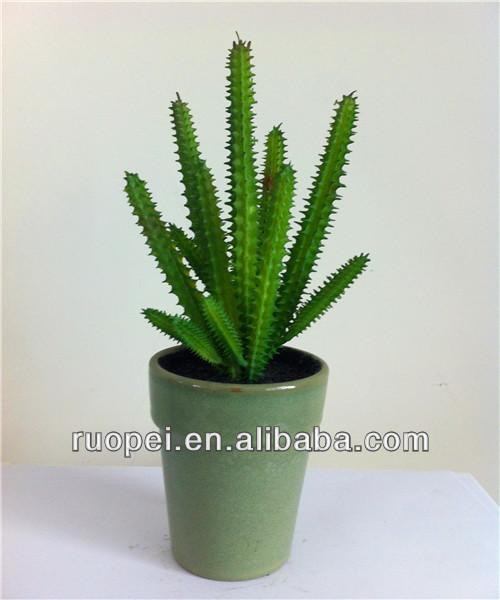 Artificielle plantes succulentes mini cactus for Mini cactus artificiel