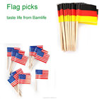 Germany country paper toothpick flag length 2.6'' branded logo