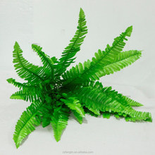 light green plant wall decorative imitation fern glass wholesale artificial persai fern plant for sale