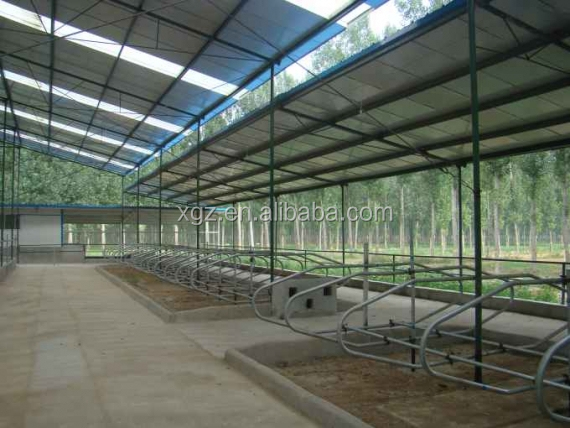 low cost advanced design cattle barns with automtic equipments