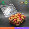 Plastic clear blister cherry tomatoes packaging box