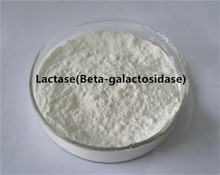 Good Quality Yogurt Use Lactase Enzyme