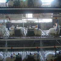 high quality rabbit cages for rabbit farm sale