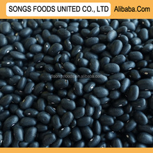 Black Kidney Beans Prices